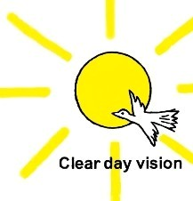 Clear Day Vision